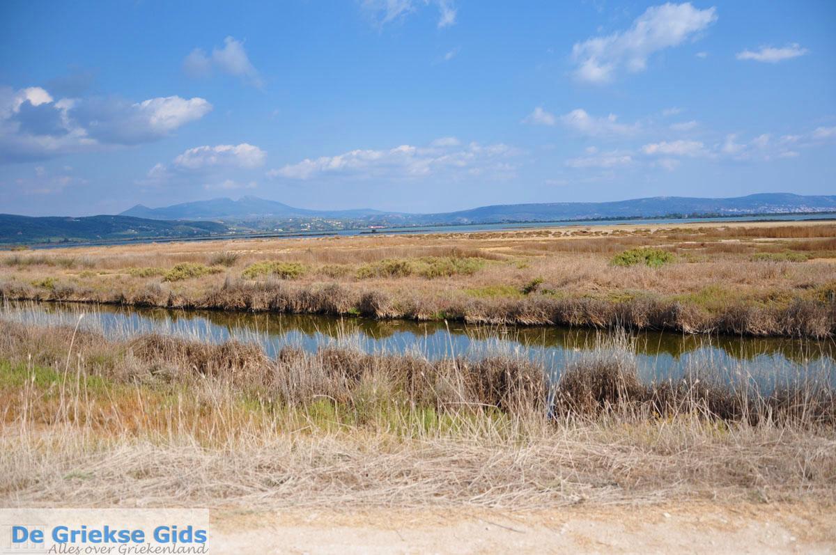 foto Bij Gialova en Voidokilia | Messinia Peloponessos | Foto 18