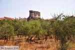 GriechenlandWeb.de Aghios Nikolaos in Mani | Messinia Peloponessos | Foto 2 - Foto GriechenlandWeb.de