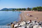 GriechenlandWeb.de Agios Andreas | Messinia Peloponessos | GriechenlandWeb.de 14 - Foto GriechenlandWeb.de