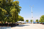 GriechenlandWeb.de Pylos (Navarino) | Messinia Peloponessos | Foto 25 - Foto GriechenlandWeb.de