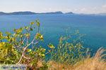 Pylos (Navarino) | Messinia Peloponessos | Foto 37 - Foto van De Griekse Gids