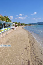 GriechenlandWeb.de Gialova | Messinia Peloponessos | Foto 11 - Foto GriechenlandWeb.de