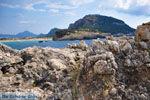 Bij Gialova en Voidokilia | Messinia Peloponessos | Foto 41 - Foto van De Griekse Gids