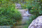 Watervallen Polilimnio | Messinia Peloponessos | Foto 13 - Foto van De Griekse Gids