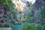 Watervallen Polilimnio | Messinia Peloponessos | Foto 22 - Foto van De Griekse Gids