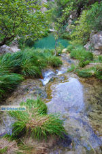 Watervallen Polilimnio | Messinia Peloponessos | Foto 31 - Foto van De Griekse Gids