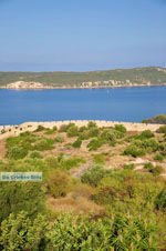 GriechenlandWeb.de Pylos (Navarino) | Messinia Peloponessos | Foto 97 - Foto GriechenlandWeb.de