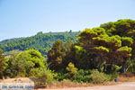 Agiannakis strand | Messinia Peloponessos | Foto 1 - Foto van De Griekse Gids