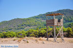 Agiannakis strand | Messinia Peloponessos | Foto 11 - Foto van De Griekse Gids