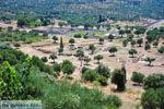 Oud-Messini Ithomi   Messinia Peloponessos   Foto 4 - Foto van De Griekse Gids