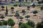 Oud-Messini Ithomi | Messinia Peloponessos | Foto 16 - Foto van De Griekse Gids