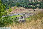 Oud-Messini Ithomi | Messinia Peloponessos | Foto 17 - Foto van De Griekse Gids