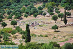 Oud-Messini Ithomi   Messinia Peloponessos   Foto 19 - Foto van De Griekse Gids