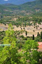 Oud-Messini Ithomi | Messinia Peloponessos | Foto 25 - Foto van De Griekse Gids