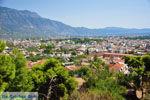 Kalamata | Messinia Peloponessos | De Griekse Gids 38 - Foto van De Griekse Gids