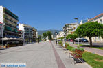 Kalamata | Messinia Peloponessos | De Griekse Gids 50 - Foto van De Griekse Gids