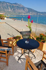 Kalamata | Messinia Peloponessos | De Griekse Gids 68 - Foto van De Griekse Gids