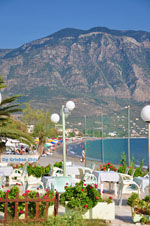 GriechenlandWeb.de Kalamata | Messinia Peloponessos | GriechenlandWeb.de 72 - Foto GriechenlandWeb.de
