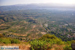 Vlakte bij Sparta vanaf Mystras (Mistras) gezien | Lakonia Peloponessos 3 - Foto van De Griekse Gids