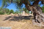 GriechenlandWeb.de Oud-Sparta (Archaia Sparti) | Lakonia Peloponessos | 6 - Foto GriechenlandWeb.de