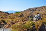 Monemvasia (Monemvassia) | Lakonia Peloponessos | De Griekse Gids 92