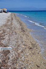 Xylokastro | Korinthia Peloponessos | De Griekse Gids 3 - Foto van De Griekse Gids