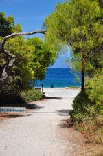 Xylokastro | Korinthia Peloponessos | De Griekse Gids 7 - Foto van De Griekse Gids