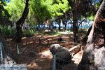 Xylokastro | Korinthia Peloponessos | De Griekse Gids 17 - Foto van De Griekse Gids