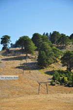 Bergdorpen Ziria | Korinthia Peloponessos | De Griekse Gids 8 - Foto van De Griekse Gids