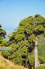Bergdorpen Ziria   Korinthia Peloponessos   De Griekse Gids 9 - Foto van De Griekse Gids