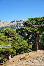 Bergdorpen Ziria | Korinthia Peloponessos | De Griekse Gids 10 - Foto van De Griekse Gids