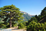 Bergdorpen Ziria | Korinthia Peloponessos | De Griekse Gids 12 - Foto van De Griekse Gids