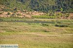 Stymfalia | Korinthia Peloponessos | GriechenlandWeb.de 13 - Foto GriechenlandWeb.de