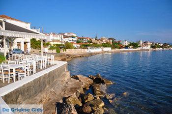 Petalidi | Messinia Peloponessos | GriechenlandWeb.de 1 - Foto von GriechenlandWeb.de