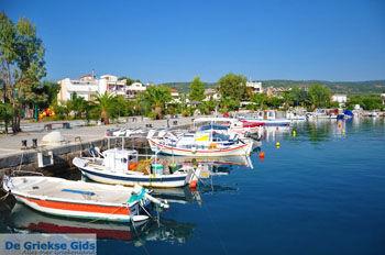 Agios Andreas | Messinia Peloponessos | De Griekse Gids 8 - Foto van De Griekse Gids