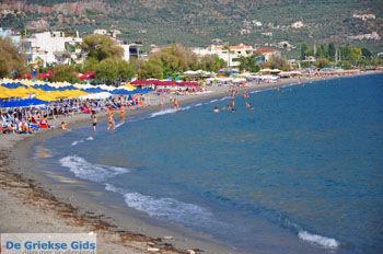 Kalamata   Messinia Peloponessos   De Griekse Gids 77 - Foto van De Griekse Gids