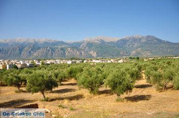 Sparta (Sparti) | Lakonia Peloponessos | GriechenlandWeb.de 1 - Foto von GriechenlandWeb.de