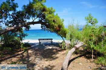 Xylokastro | Korinthia Peloponessos | GriechenlandWeb.de 14 - Foto von GriechenlandWeb.de