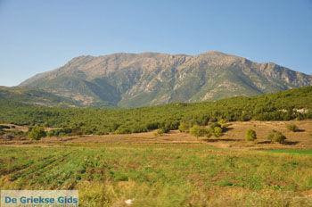 Stymfalia | Korinthia Peloponessos | De Griekse Gids 3 - Foto van De Griekse Gids