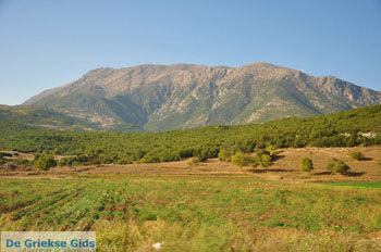 Stymfalia | Korinthia Peloponessos | GriechenlandWeb.de 3 - Foto GriechenlandWeb.de
