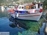 Agia Kyriaki Pilion - Griekenland - foto 11 - Foto van De Griekse Gids