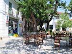 Argalasti Pilion - Griekenland - foto 4 - Foto van De Griekse Gids