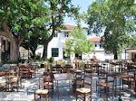 Argalasti Pilion - Griekenland - foto 5 - Foto van De Griekse Gids