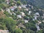 Makrinitsa Pilion - Griekenland - foto 3 - Foto van De Griekse Gids