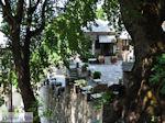 Makrinitsa Pilion - Griekenland - foto 24 - Foto van De Griekse Gids