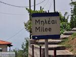 Milies Pilion - Griekenland - foto 2 - Foto van De Griekse Gids