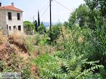 Milies Pilion - Griekenland - foto 12 - Foto van De Griekse Gids