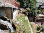 Pinakates Pilion - Griekenland - foto 3 - Foto van De Griekse Gids
