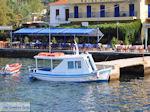 Platania Pilion - Griekenland - foto 3 - Foto van De Griekse Gids
