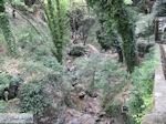 Portaria Pilion - Griekenland - foto 1 - Foto van De Griekse Gids